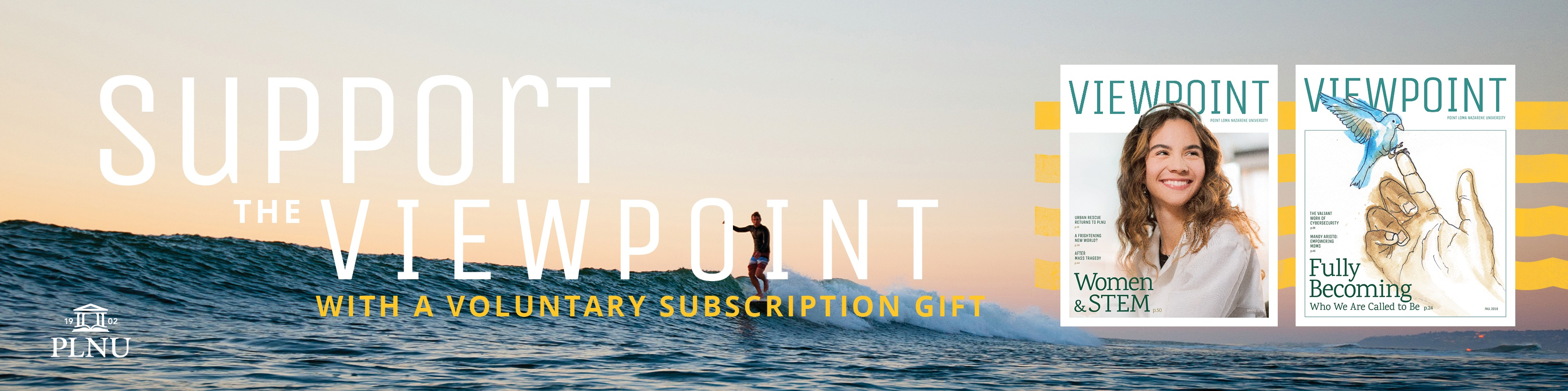 Viewpoint Voluntary Subscription